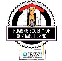 humane-society-of-cozumel-island